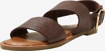 INUOVO Sandale in kastanienbraun, Produktansicht