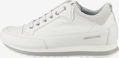 Candice Cooper Sneakers in weiß, Produktansicht