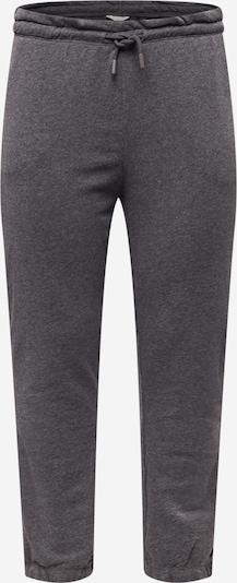 Kelnės 'LESS' iš ONLY Carmakoma, spalva – bazalto pilka, Prekių apžvalga