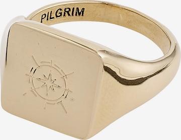 auksinė Pilgrim Žiedas 'Cressida'