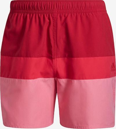 világos-rózsaszín / tűzpiros / világospiros ADIDAS PERFORMANCE Sport fürdőruha, Termék nézet