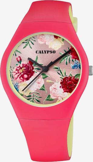 CALYPSO WATCHES Uhr in mischfarben / dunkelpink, Produktansicht