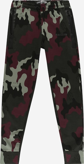 Raizzed Trousers 'Seattle' in pastel green / dark green / wine red, Item view