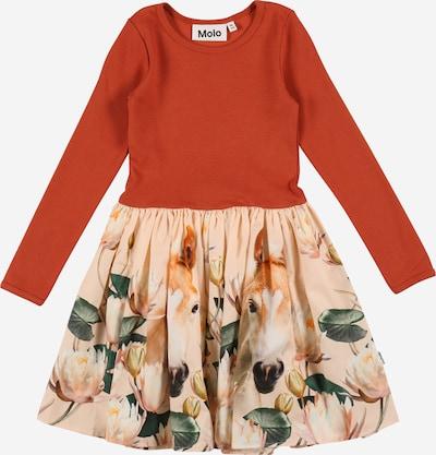 Rochie 'Casie' Molo pe mai multe culori / portocaliu, Vizualizare produs