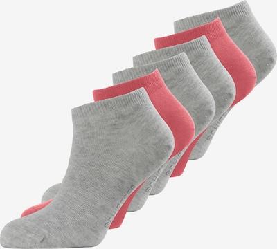 SCHIESSER Chaussons en gris / rose, Vue avec produit