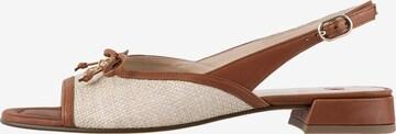 Högl Sandaletten 'Raffaela' in Braun