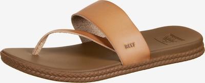 REEF Strandschuh 'Cushion Bounce Sol' in braun, Produktansicht
