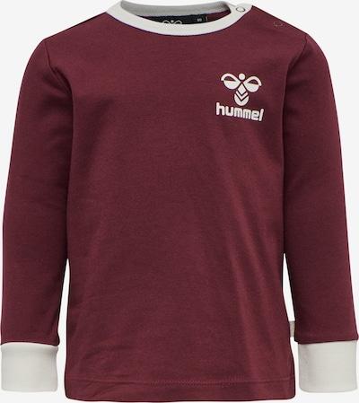 Hummel Functioneel shirt in de kleur Bordeaux, Productweergave