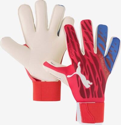 PUMA Handschuh in rot, Produktansicht
