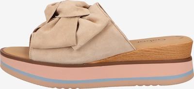 GABOR Pantolette in beige / blau / braun / pink, Produktansicht