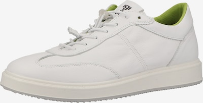 IGI&CO Sneakers in Reed / White, Item view