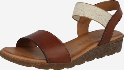 Sandale cu baretă COSMOS COMFORT pe maro, Vizualizare produs