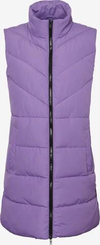 Noisy may Vest 'NMDALCON' in Purple