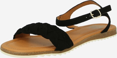 Apple of Eden Sandalette in schwarz, Produktansicht