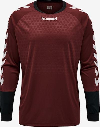 Hummel Sweatshirt in weinrot, Produktansicht