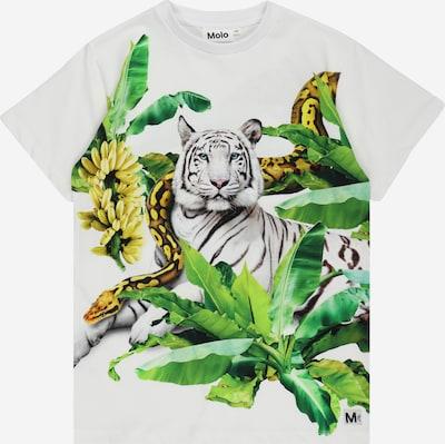 Molo Shirt 'Raveno' in dunkelbraun / gelb / dunkelgrün / schwarz / weiß, Produktansicht