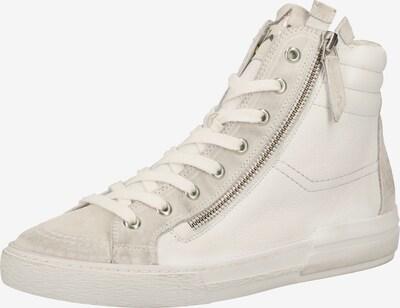 Paul Green Baskets hautes en gris / blanc, Vue avec produit