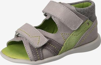 Däumling Sandale in grau / grün, Produktansicht