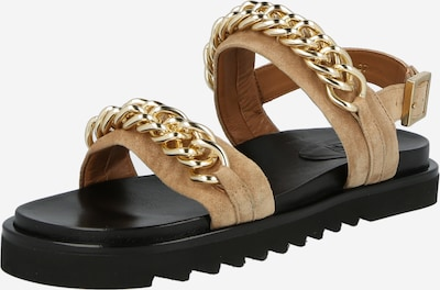 Sandale cu baretă Billi Bi pe maro / auriu, Vizualizare produs