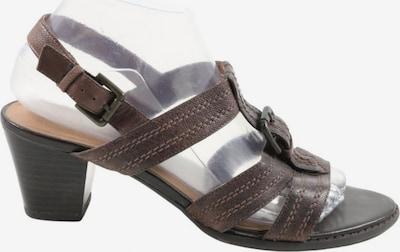 Janet D. Riemchen-Sandaletten in 39 in braun, Produktansicht