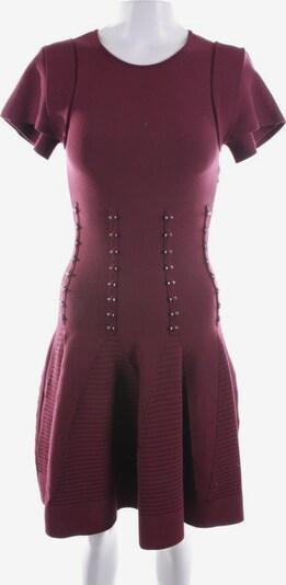 ANTONIO BERADI Kleid in XXS in weinrot, Produktansicht