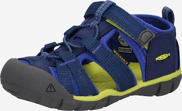KEEN Sandaal 'SEACAMP II', värv sinine