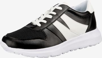 ambellis Sneakers in Black