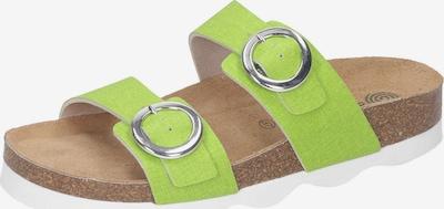 DR. BRINKMANN Pantolette in kiwi, Produktansicht
