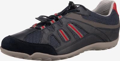 GEOX Sneaker in dunkelblau / grau / rot, Produktansicht