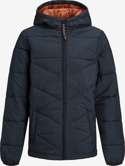 Produkt Winterjas in de kleur Blauw, Productweergave