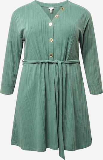 River Island Plus Kleid in mint, Produktansicht