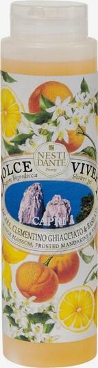 Nesti Dante Firenze Duschgel 'Capri' in transparent, Produktansicht
