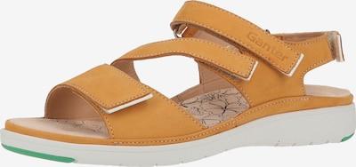 Ganter Sandalen in gelb, Produktansicht