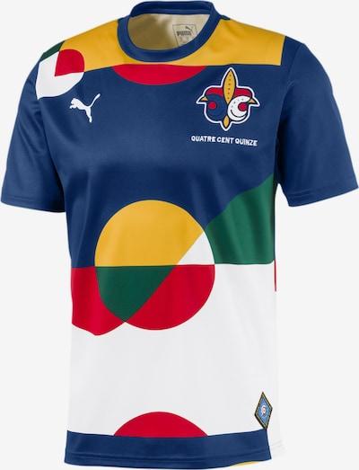 PUMA Fußballtrikot 'Frankreich' in navy / mischfarben, Produktansicht
