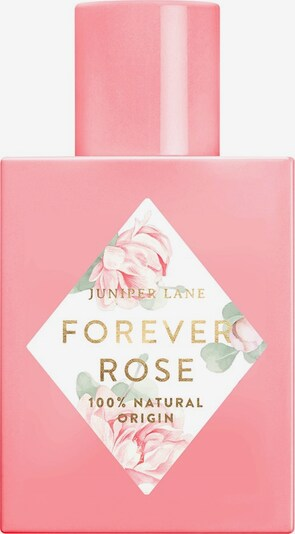 Juniper Lane Fragrance 'Art du Parfum 'Forever Rose' in Transparent, Item view