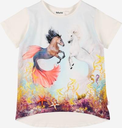 Molo T-Shirt en bleu clair / marron / mélange de couleurs / corail / blanc, Vue avec produit