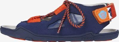 Affenzahn Sandale in blau / orange, Produktansicht