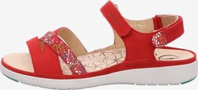 Ganter Sandalen/Sandaletten in rot, Produktansicht