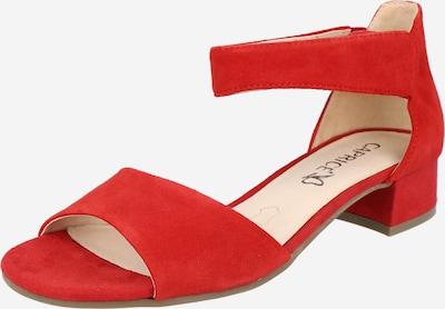 CAPRICE Strap sandal in Red, Item view