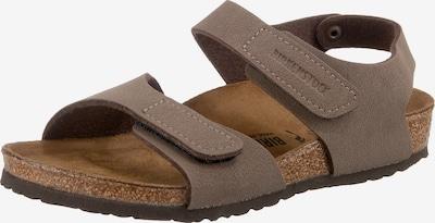 BIRKENSTOCK Sandale 'Palu' in braunmeliert, Produktansicht
