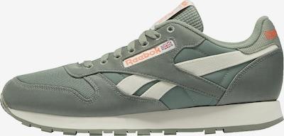 Reebok Classic Sneaker in pastellgrün / neonorange / weiß, Produktansicht