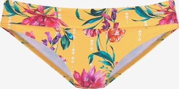 SUNSEEKER Bikini Bottoms in Yellow