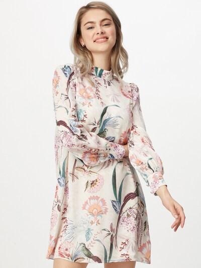Ted Baker Kleid in creme / mischfarben, Modelansicht