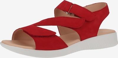 Legero Sandale in rot, Produktansicht