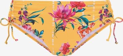 SUNSEEKER Bikini-Hose in gelb / mischfarben, Produktansicht
