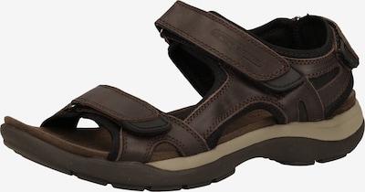 CAMEL ACTIVE Sandale in beige / dunkelbraun, Produktansicht