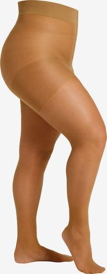 camano Feinstrumpfhose 'Women Curvy Tights 20 DEN matt' in transparent, Produktansicht