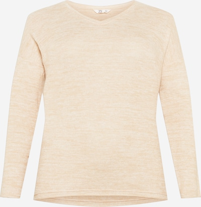 Z-One Sweater 'Skadi' in Beige mottled, Item view