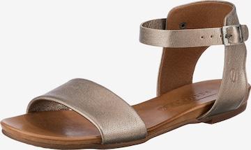 Paul Vesterbro Sandals in Bronze