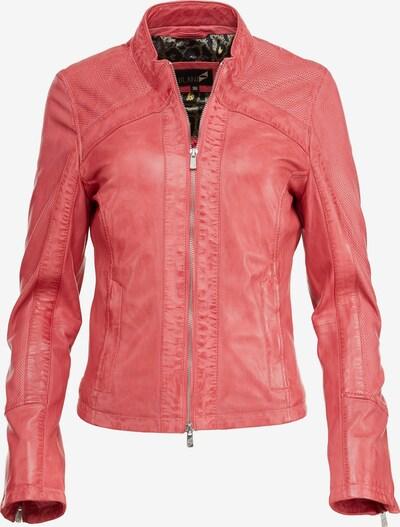 Jilani Lederjacke 'MARA' in pink, Produktansicht